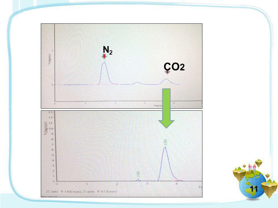 N2 CO2