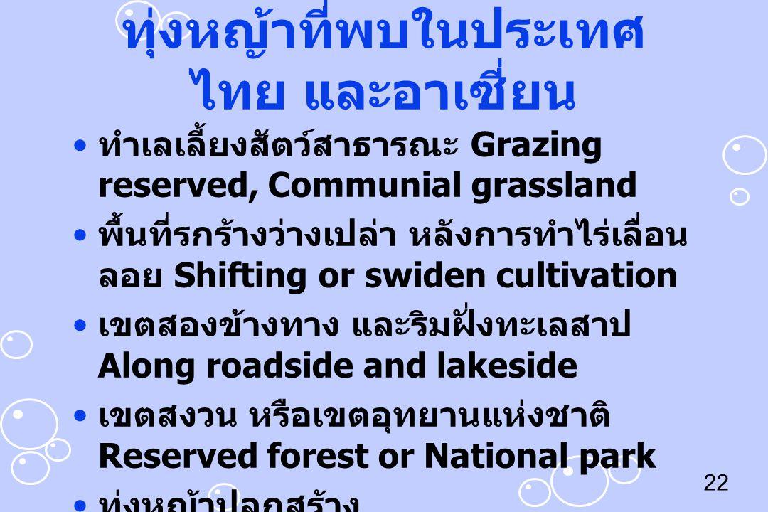 ทุ่งหญ้าที่พบในประเทศไทย และอาเซี่ยน