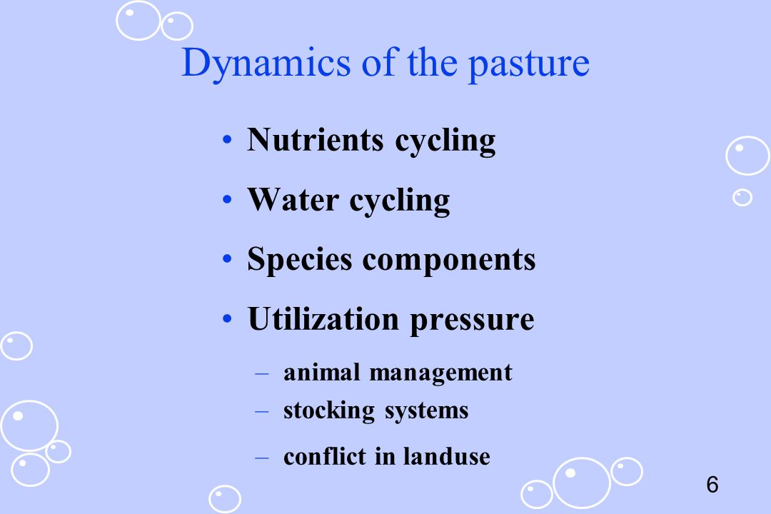 Dynamics of the pasture