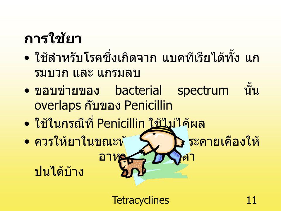 การใช้ยา ใช้สำหรับโรคซึ่งเกิดจาก แบคทีเรียได้ทั้ง แกรมบวก และ แกรมลบ