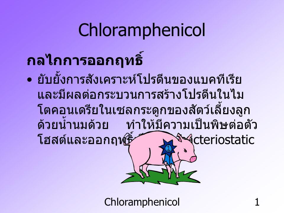Chloramphenicol กลไกการออกฤทธิ์