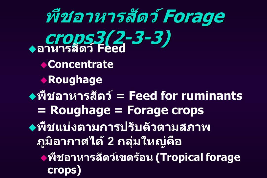 พืชอาหารสัตว์ Forage crops3(2-3-3)