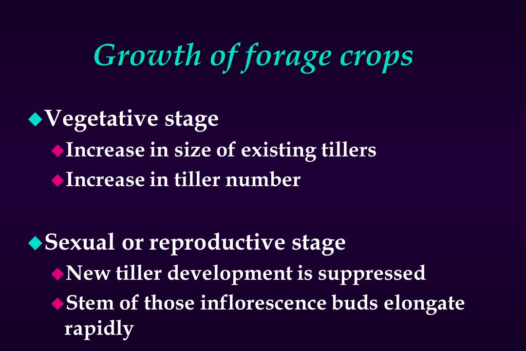 Growth of forage crops Vegetative stage Sexual or reproductive stage