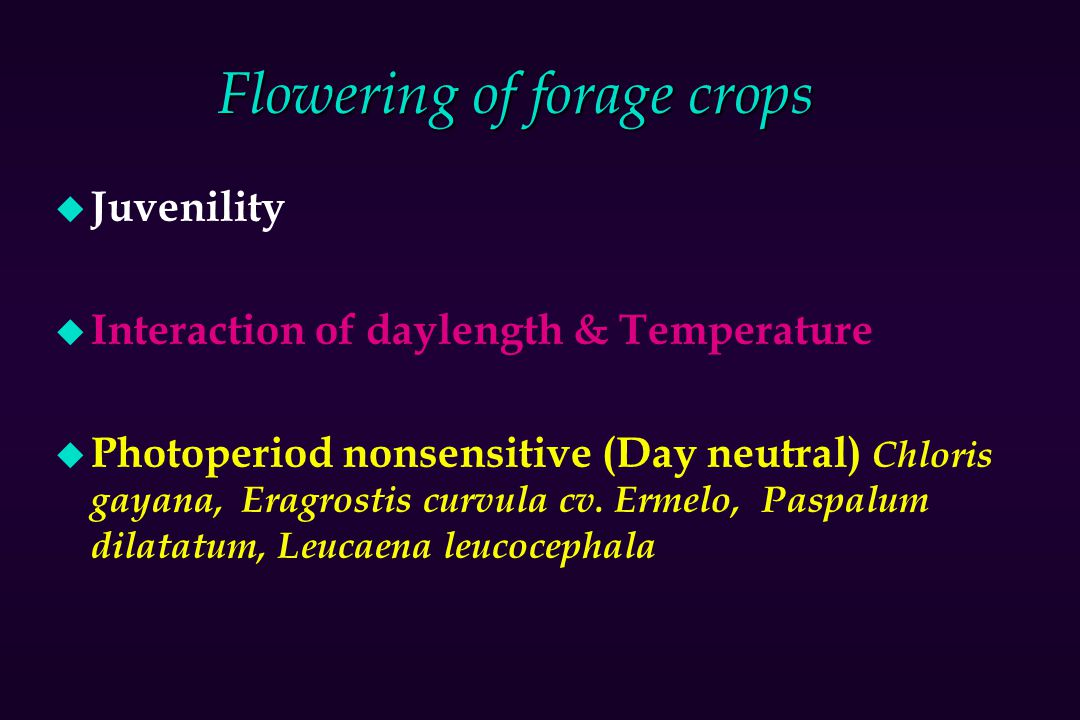 Flowering of forage crops