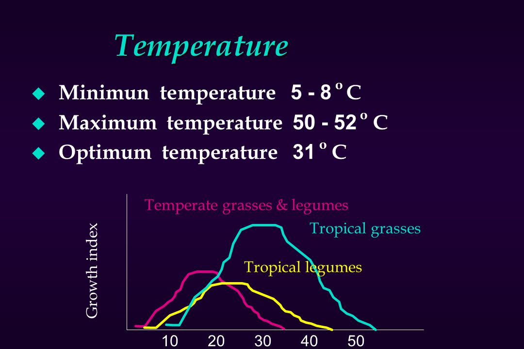Temperature Minimun temperature o C