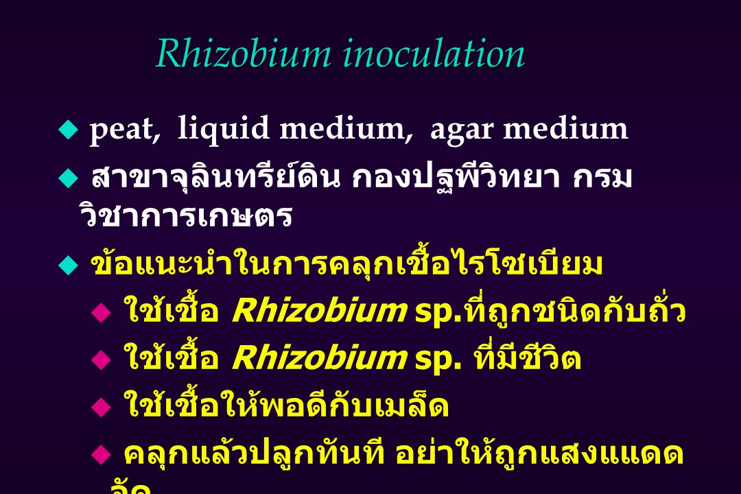 Rhizobium inoculation