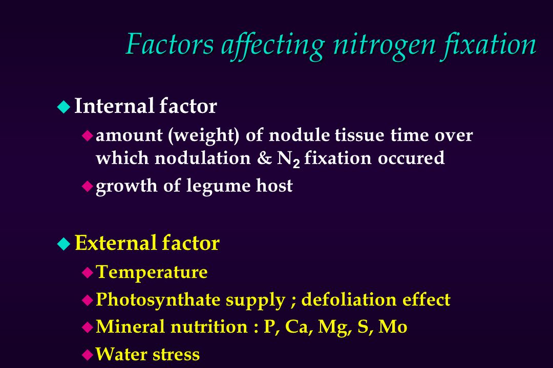 Factors affecting nitrogen fixation