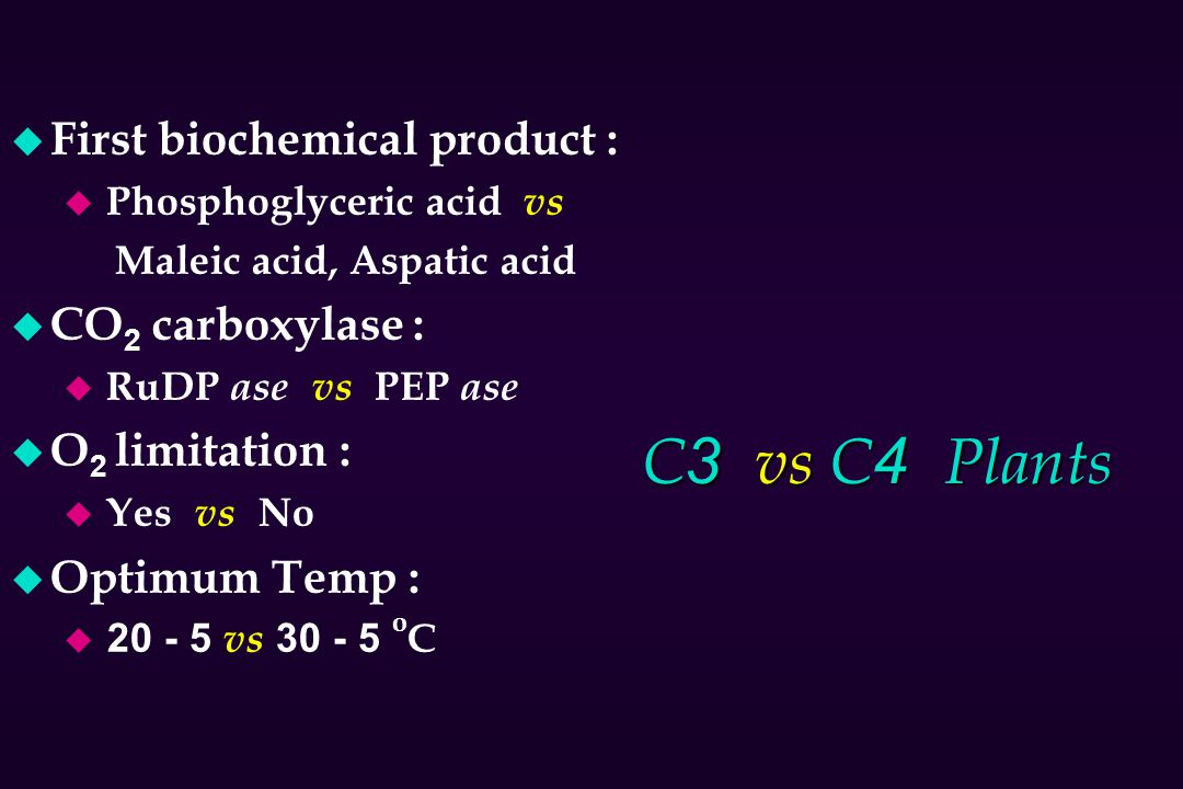 C3 vs C4 Plants First biochemical product : CO2 carboxylase :