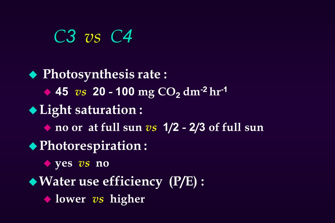 C3 vs C4 Photosynthesis rate : Light saturation : Photorespiration :