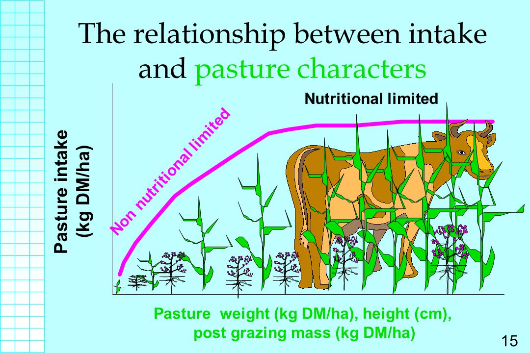 The relationship between intake and pasture characters