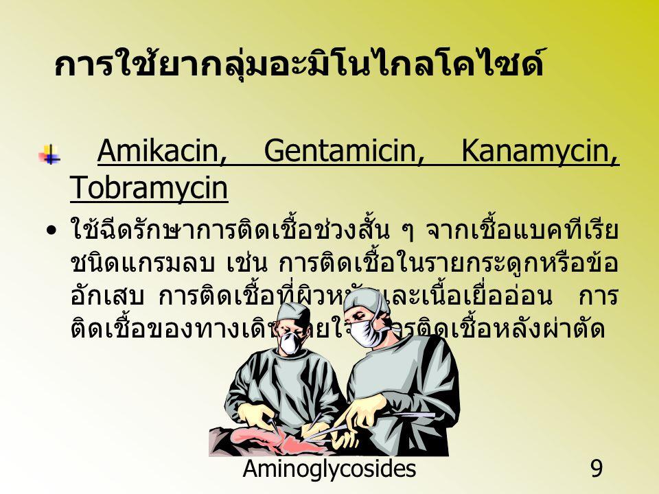 Amikacin, Gentamicin, Kanamycin, Tobramycin