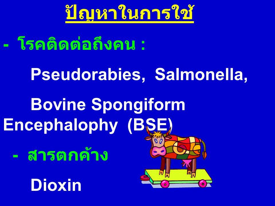 ปัญหาในการใช้ - โรคติดต่อถึงคน : Pseudorabies, Salmonella,