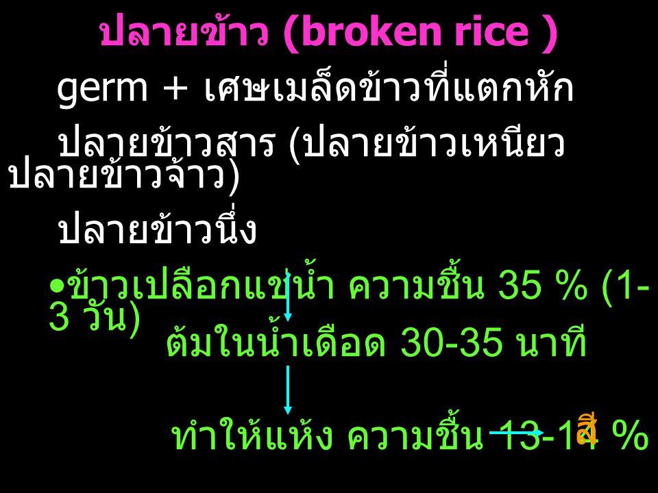 ปลายข้าว (broken rice )