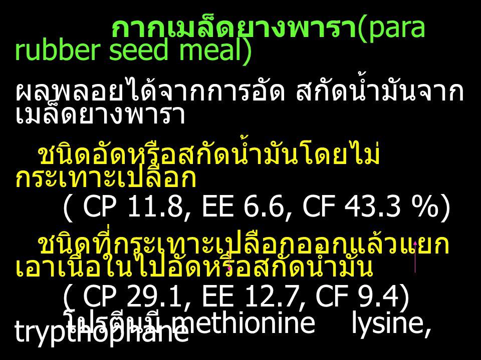 กากเมล็ดยางพารา(para rubber seed meal)