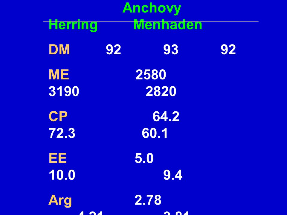 Anchovy Herring Menhaden