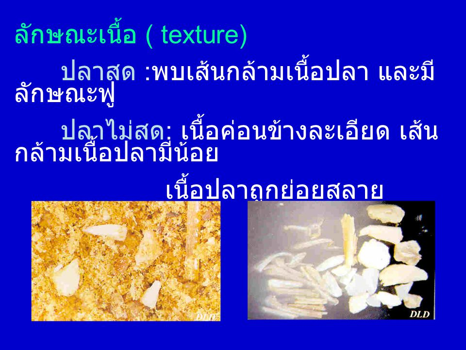 ลักษณะเนื้อ ( texture)