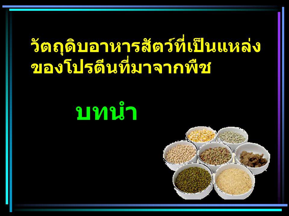 วัตถุดิบอาหารสัตว์ที่เป็นแหล่งของโปรตีนที่มาจากพืช