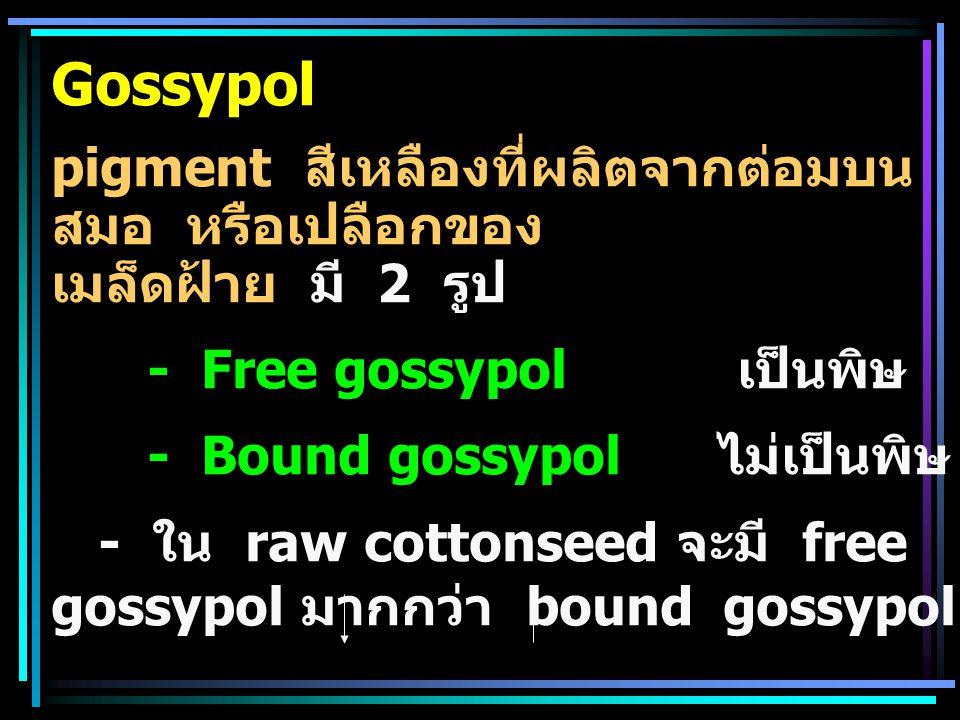 Gossypol pigment สีเหลืองที่ผลิตจากต่อมบนสมอ หรือเปลือกของ เมล็ดฝ้าย มี 2 รูป. - Free gossypol เป็นพิษ.
