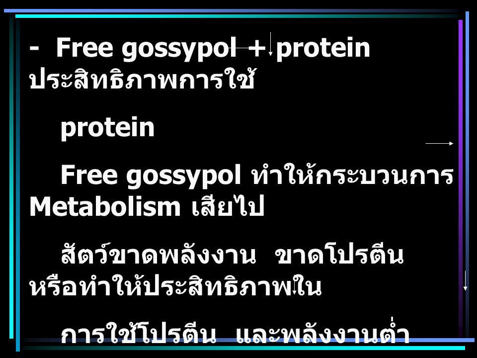 - Free gossypol + protein ประสิทธิภาพการใช้