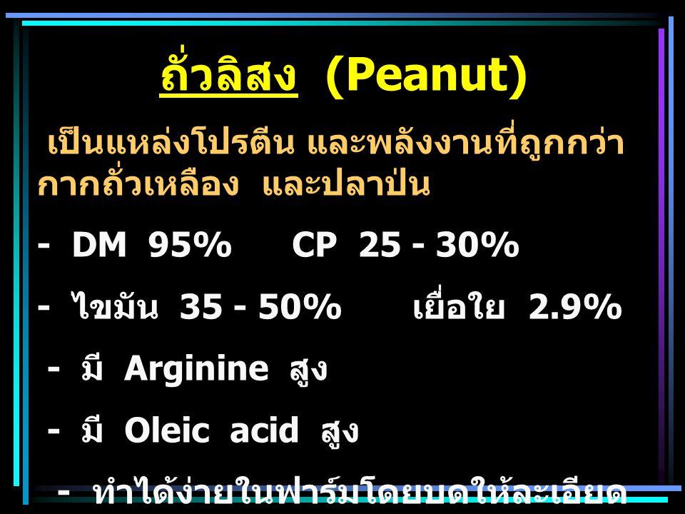 ถั่วลิสง (Peanut) เป็นแหล่งโปรตีน และพลังงานที่ถูกกว่า กากถั่วเหลือง และปลาป่น. - DM 95% CP 25 - 30%