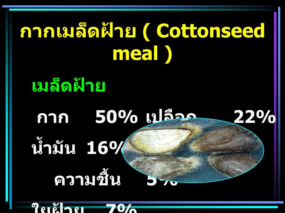 กากเมล็ดฝ้าย ( Cottonseed meal )