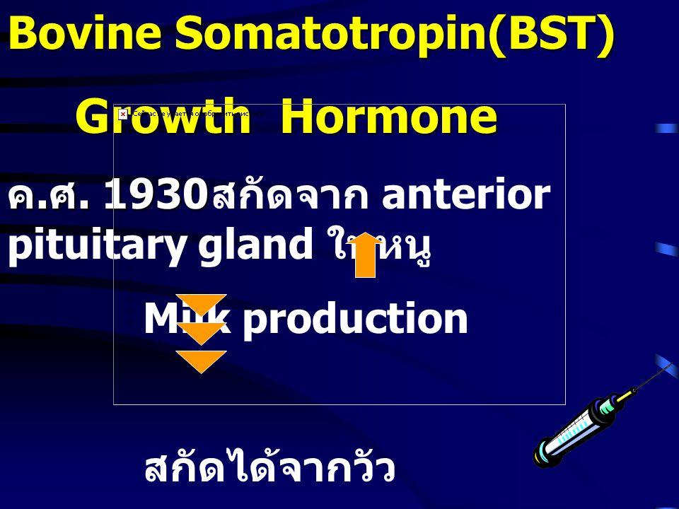 Bovine Somatotropin(BST)