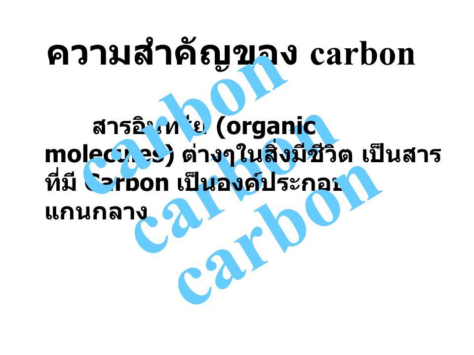 carbon carbon carbon ความสำคัญของ carbon