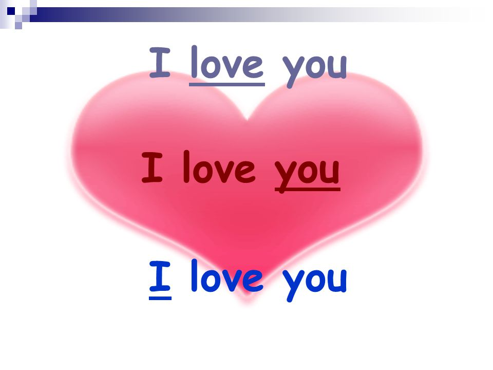 I love you I love you I love you