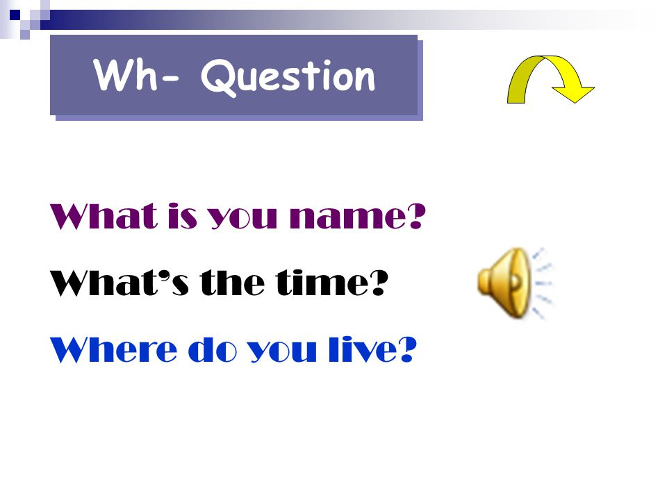 Wh- Question What is you name What's the time Where do you live