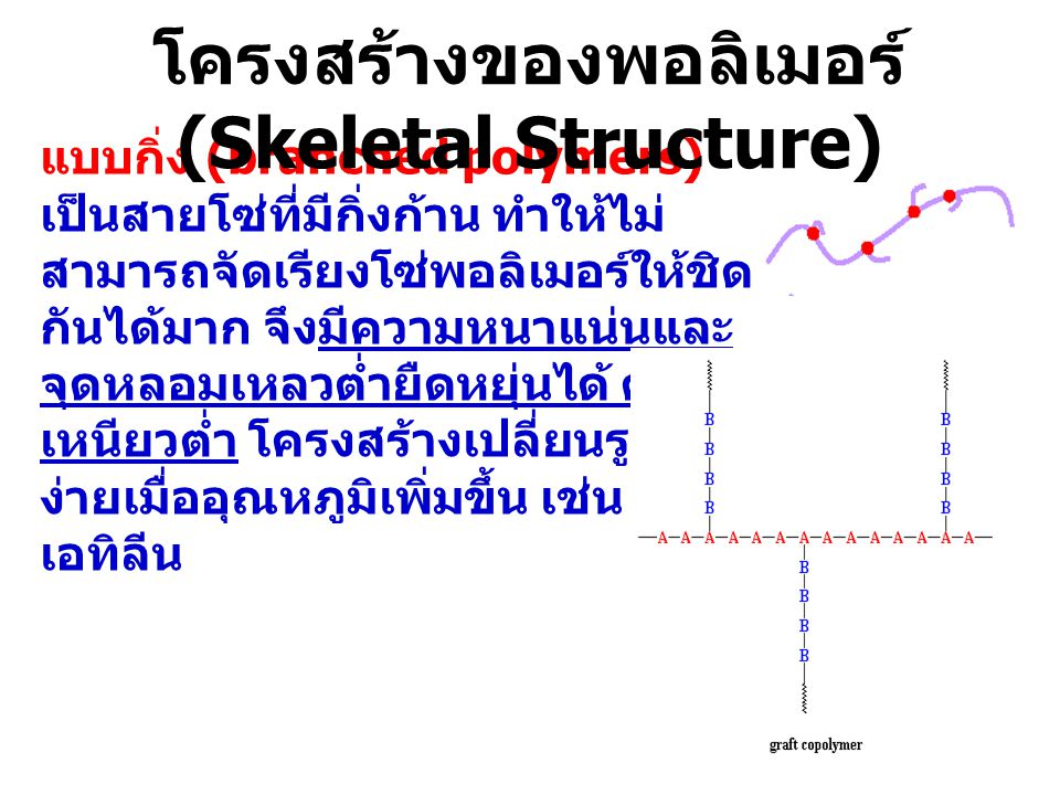 โครงสร้างของพอลิเมอร์ (Skeletal Structure)