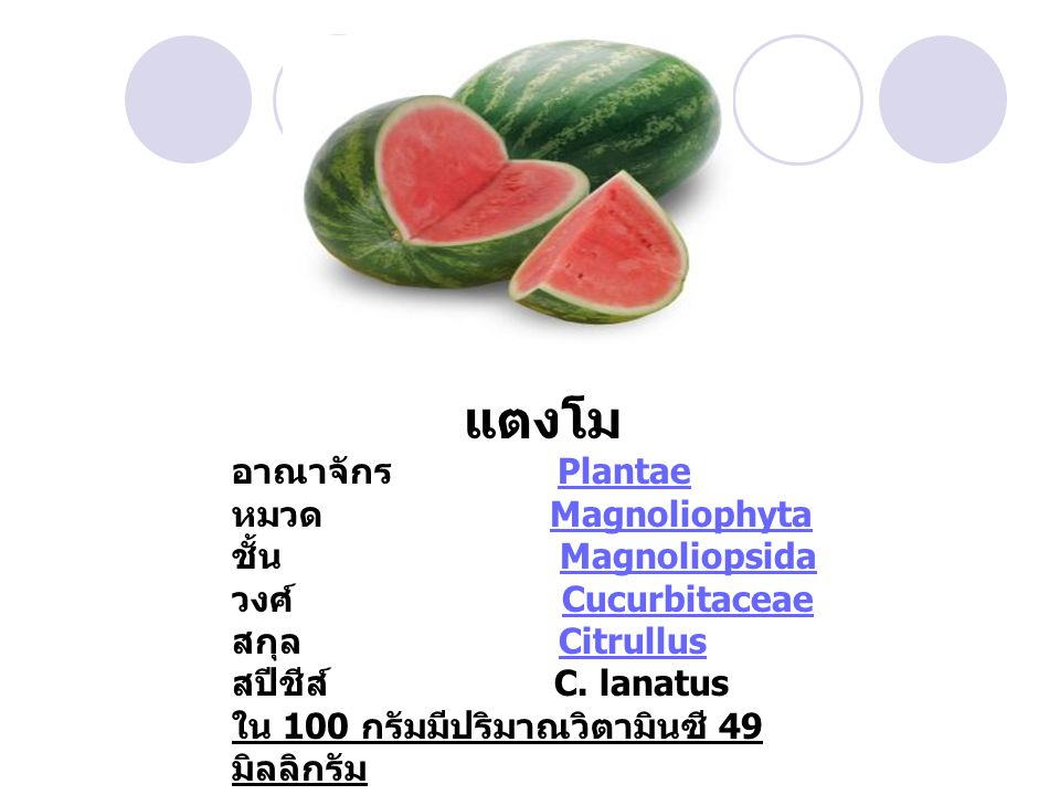 แตงโม อาณาจักร Plantae หมวด Magnoliophyta ชั้น Magnoliopsida