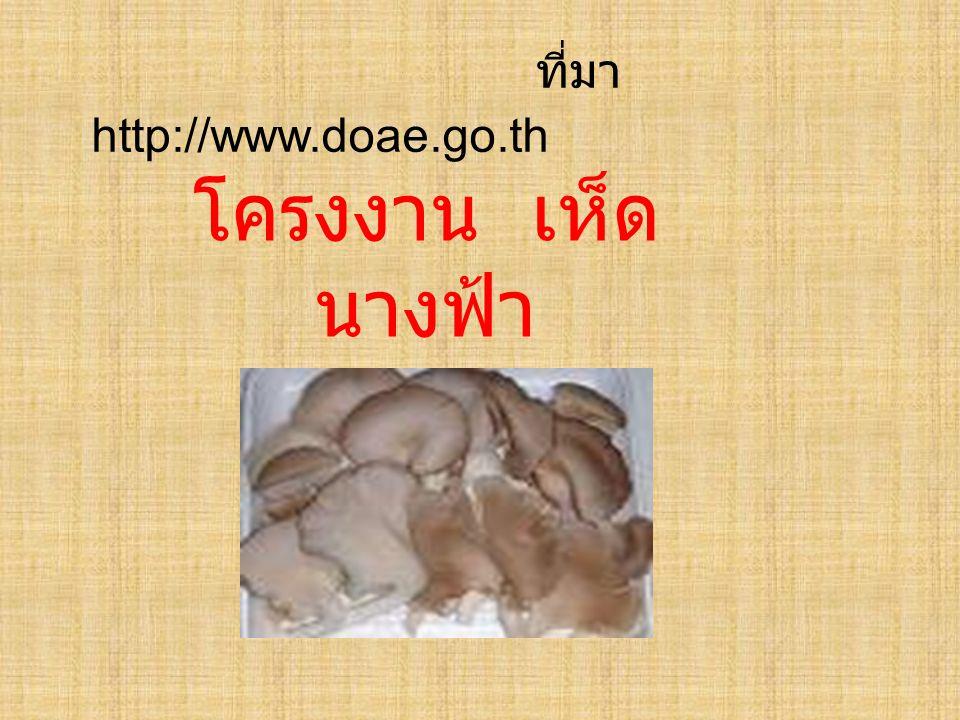 ที่มา http://www.doae.go.th