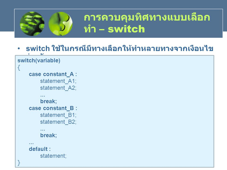 การควบคุมทิศทางแบบเลือกทำ – switch
