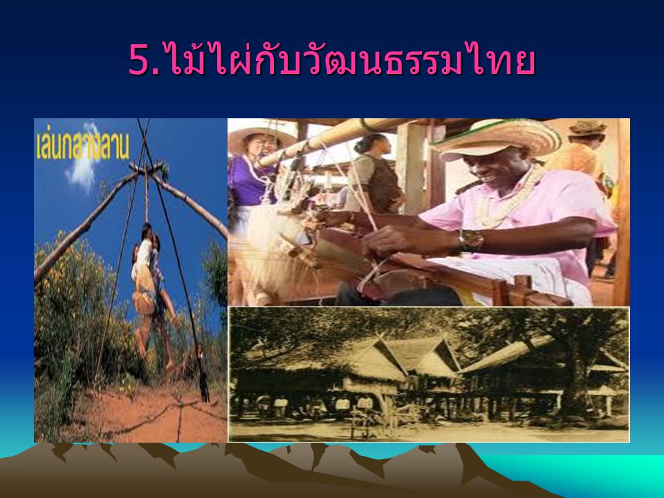 5.ไม้ไผ่กับวัฒนธรรมไทย