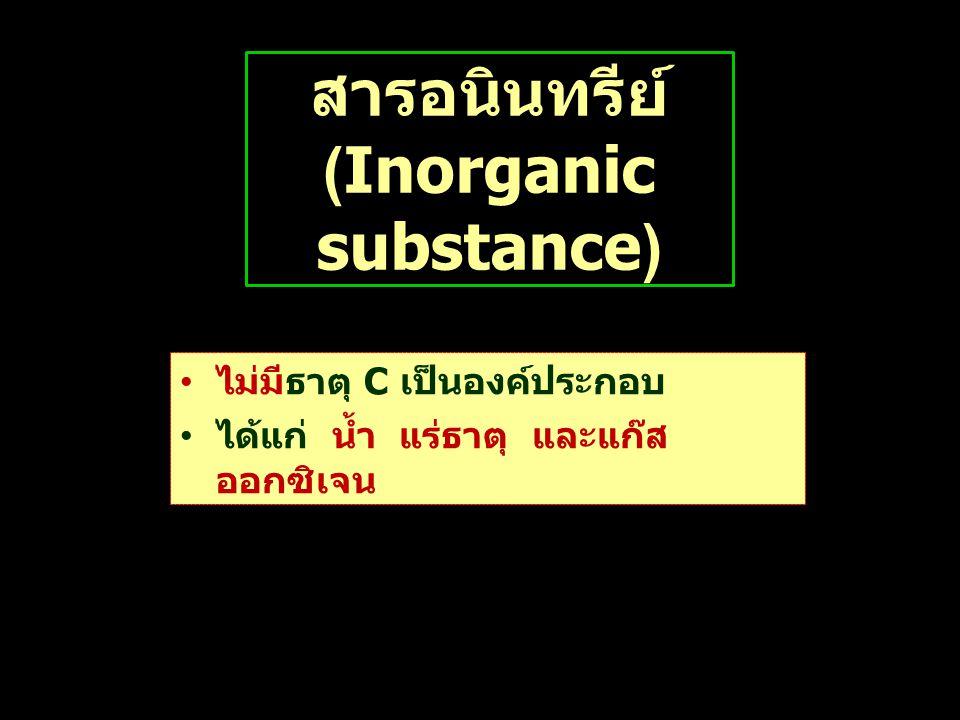 สารอนินทรีย์ (Inorganic substance)