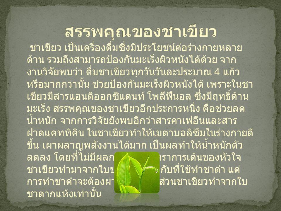 สรรพคุณของชาเขียว