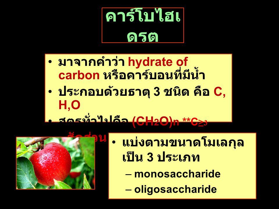 คาร์โบไฮเดรต มาจากคำว่า hydrate of carbon หรือคาร์บอนที่มีนํ้า