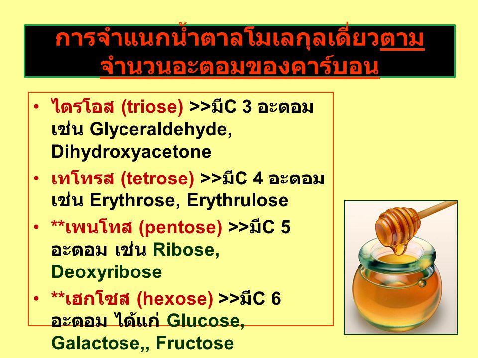 การจำแนกน้ำตาลโมเลกุลเดี่ยวตามจำนวนอะตอมของคาร์บอน