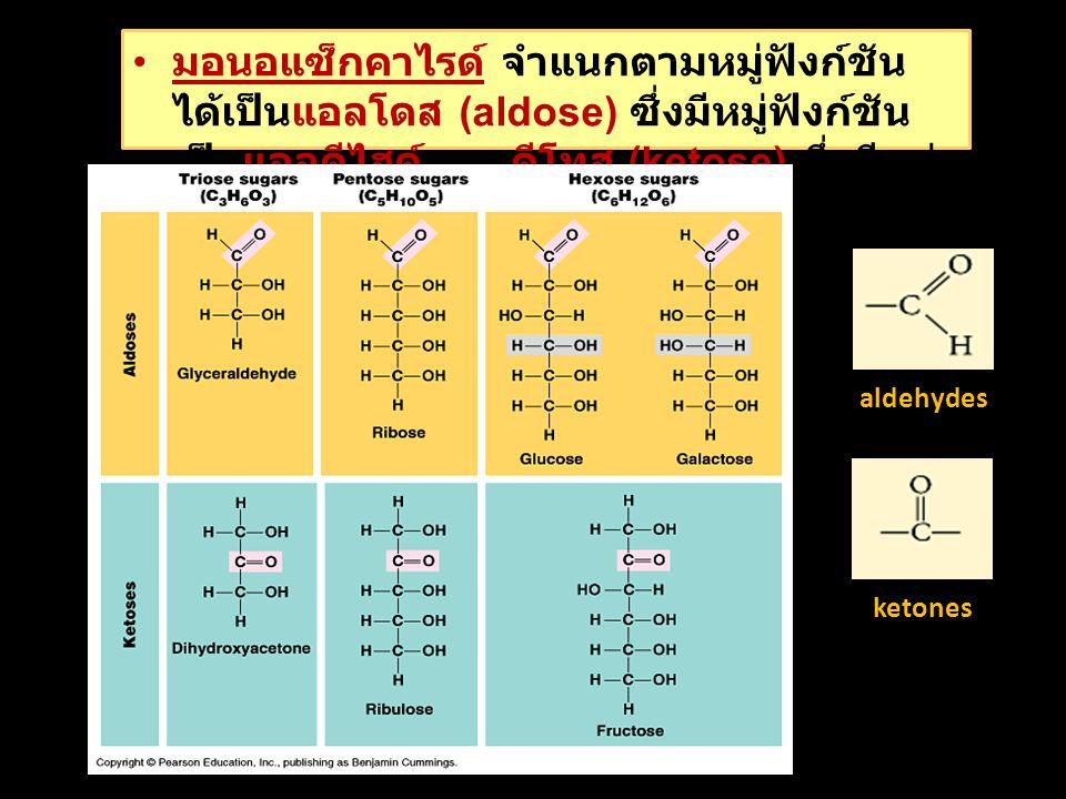 มอนอแซ็กคาไรด์ จำแนกตามหมู่ฟังก์ชันได้เป็นแอลโดส (aldose) ซึ่งมีหมู่ฟังก์ชันเป็นแอลดีไฮด์ และคีโทส (ketose) ซึ่งมีหมู่ฟังก์ชันเป็นคีโตน