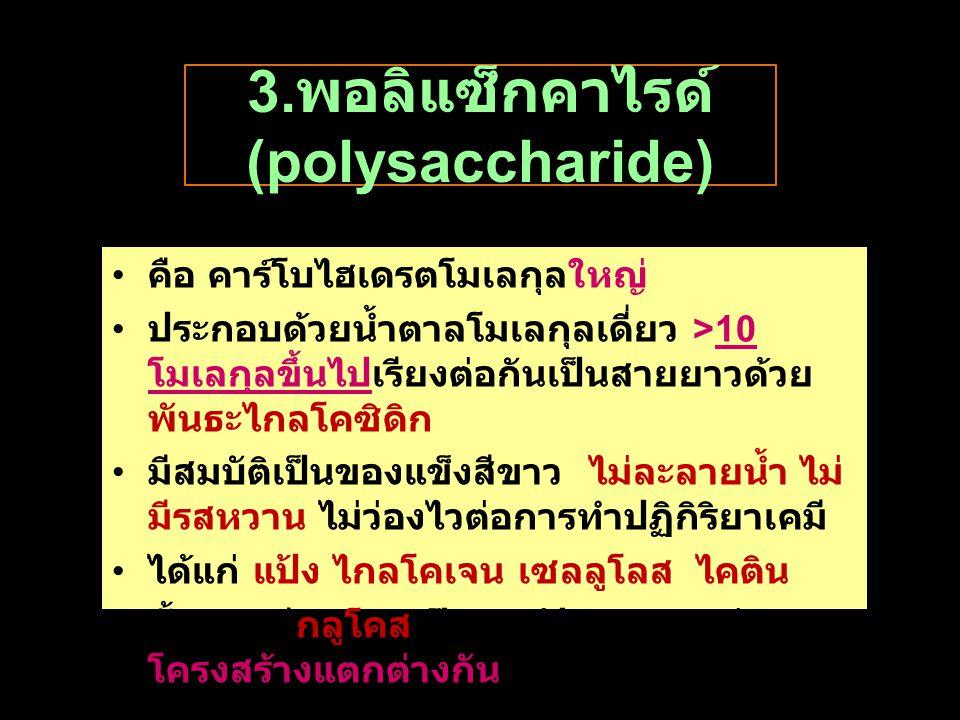 3.พอลิแซ็กคาไรด์ (polysaccharide)