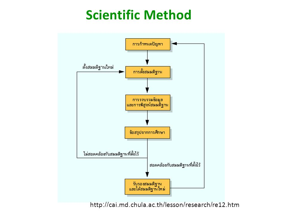 Scientific Method http://cai.md.chula.ac.th/lesson/research/re12.htm