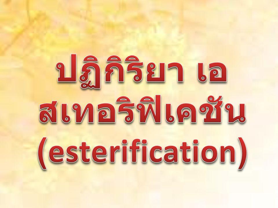 ปฏิกิริยา เอสเทอริฟิเคชัน (esterification)