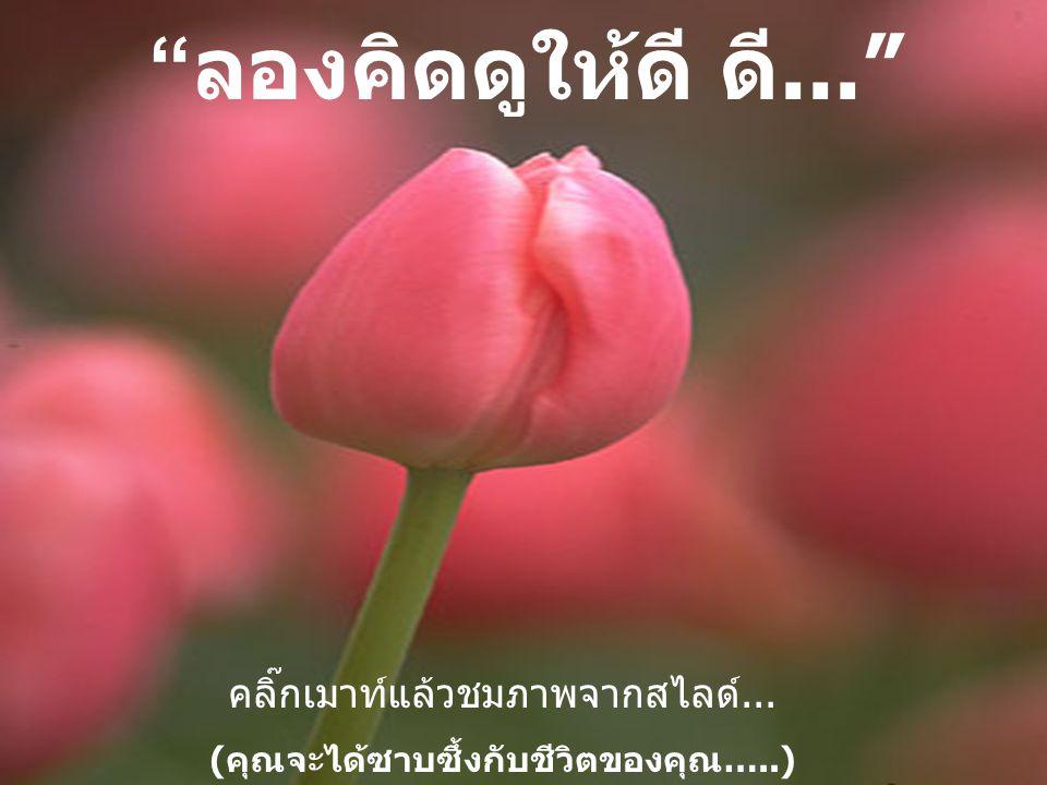 (คุณจะได้ซาบซึ้งกับชีวิตของคุณ…..)
