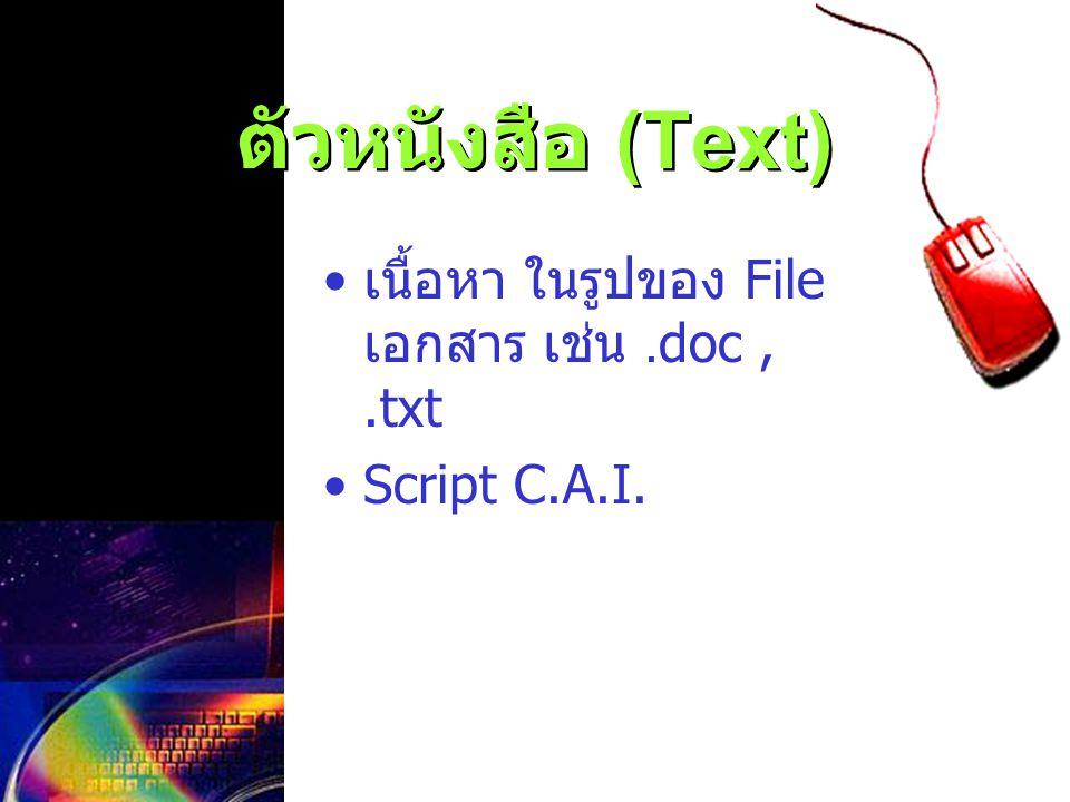 ตัวหนังสือ (Text) เนื้อหา ในรูปของ File เอกสาร เช่น .doc , .txt