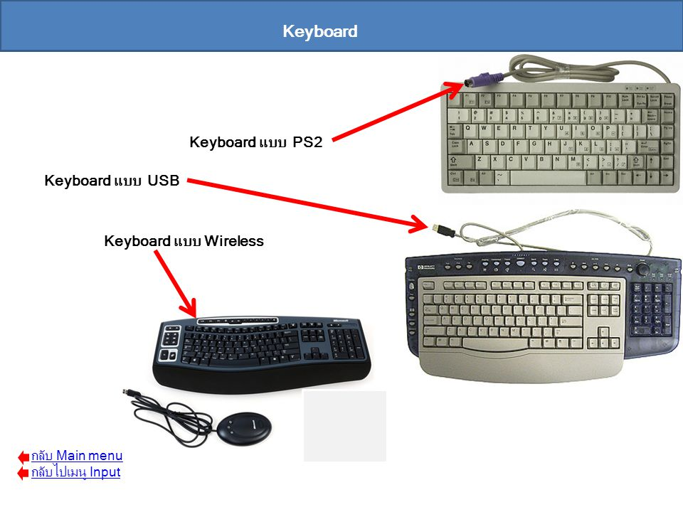 Keyboard Keyboard แบบ PS2 Keyboard แบบ USB Keyboard แบบ Wireless