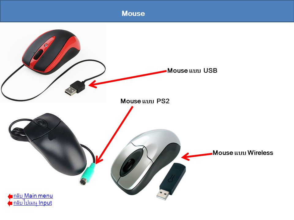 Mouse Mouse แบบ USB Mouse แบบ PS2 Mouse แบบ Wireless กลับ Main menu