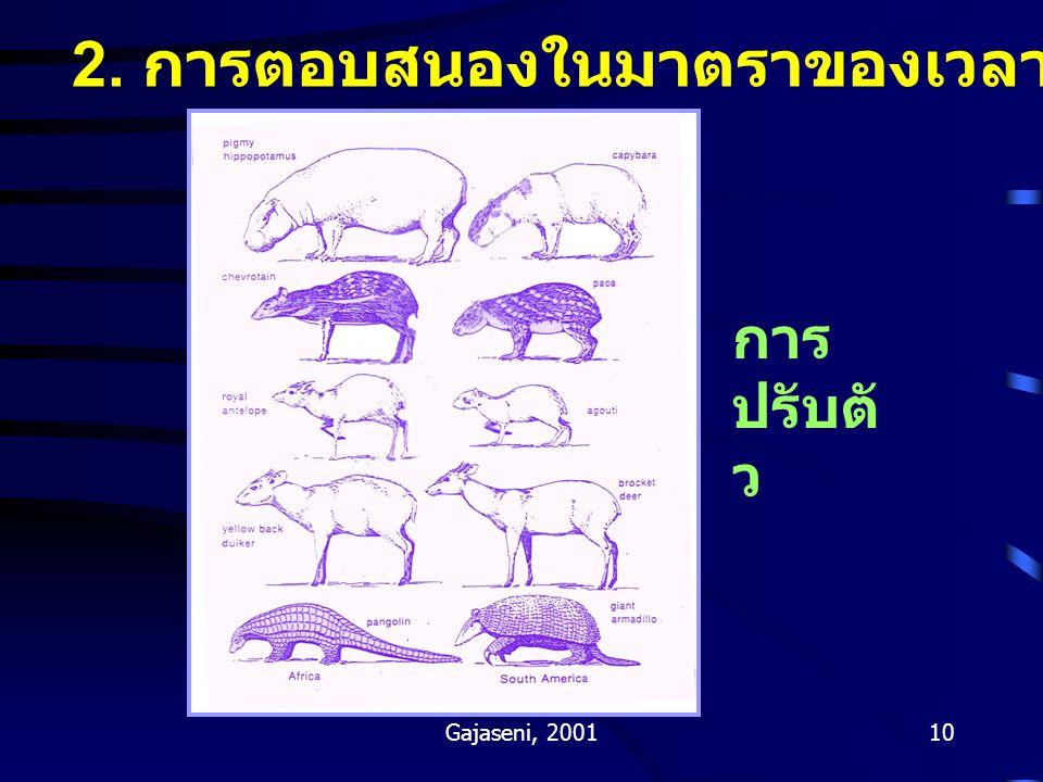2. การตอบสนองในมาตราของเวลาทางวิวัฒนาการ