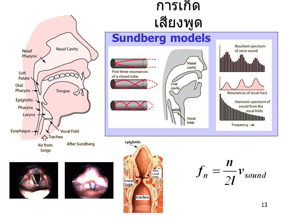 การเกิดเสียงพูด Sundberg models