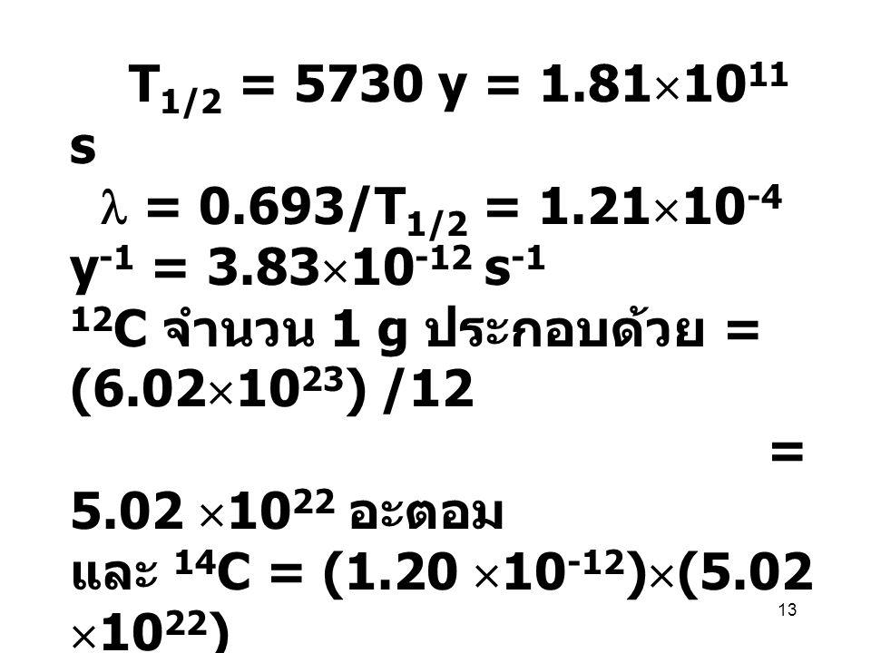 T1/2 = 5730 y = 1.811011 s  = 0.693/T1/2 = 1.2110-4 y-1 = 3.8310-12 s-1. 12C จำนวน 1 g ประกอบด้วย = (6.021023) /12.