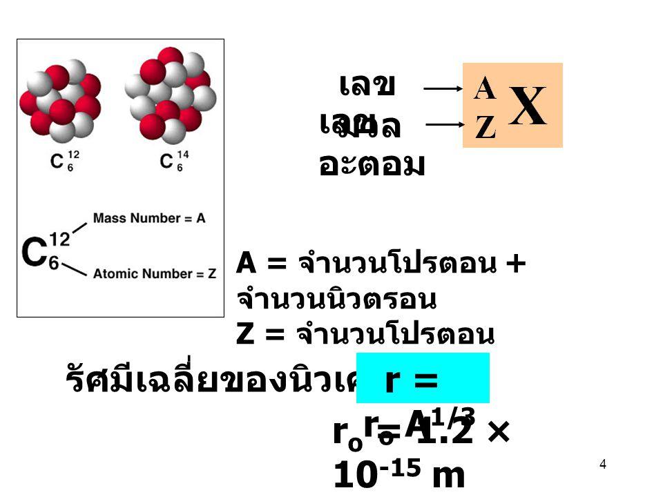 รัศมีเฉลี่ยของนิวเคลียส r = ro A1/3 ro = 1.2 × 10-15 m